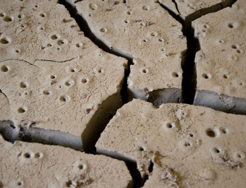 Fasteaksjonen 2018: Når klimaendringer fører til sult