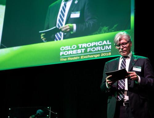 Bekymret for regnskogen i Colombia